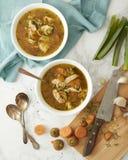 Die Türkei oder Hühnersuppe mit Wildreisen und Gemüse Lizenzfreies Stockfoto