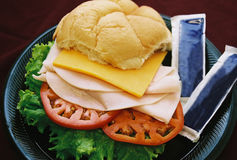 Die Türkei-Sandwich Stockfotografie