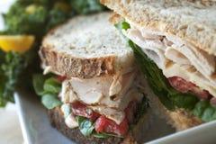 Die Türkei-Sandwich Lizenzfreies Stockfoto