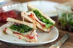 Die Türkei-Sandwich Lizenzfreies Stockbild