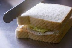 Die Türkei-Sandwich Stockfoto