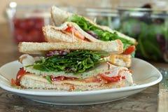 Die Türkei-Sandwich-Hälften Lizenzfreie Stockfotografie