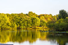 Die Türkei-Swamp See während des Falles Stockfoto