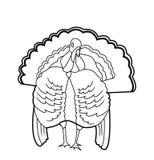 Die Türkei-Vogel vektor abbildung