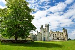 Die Türme und die Drehköpfe von Ducketts Grove, ein ruiniertes großes Haus des 19. Jahrhunderts und ehemaliger Zustand in Irland Stockfotografie