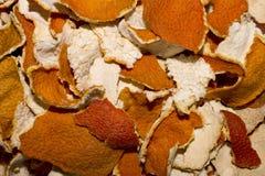 Die Tangerineschale Lizenzfreie Stockbilder