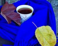 die Tasse Tee in einem blauen Schal Stockfotografie