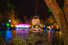 Die Tee-Schale im Tee-Haus in Pukekura-Park, neues Plymouth während des Festivals von Lichtern, Taranaki, Neuseeland stockfotos