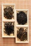 Die Teezeremonie Lizenzfreie Stockbilder