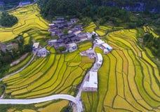 Die terassenförmig angelegten Reisfelder u. das Dorf Lizenzfreies Stockbild
