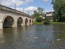 Die Themse-Brücken-Jungfernhäutchen England stockfotos