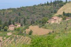 Die toskanischen Hügel Stockfoto