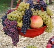 Die Traube und die Äpfel Stockfotografie