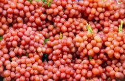 Die Trauben sind dort sind keine Samen rot, schön vereinbart stockfotografie