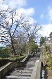Die Treppen auf Natur Lizenzfreie Stockfotos
