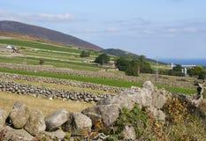 Die Trockenmauern, die von denen typisch sind, fanden in den Mourne-Bergen der Grafschaft unten in Nordirland Stockbilder