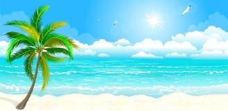 Die tropische Küste vektor abbildung