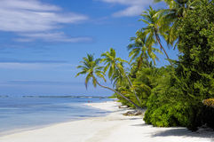 Die tropische Lagune Stockbild