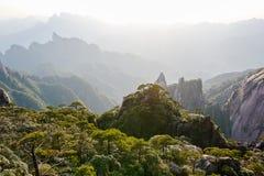 Die unaufhörlich Berge und das forset mit Wolke und Nebel Stockfotos