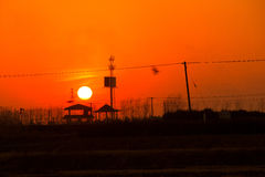 Die untergehende Sonne Stockfotografie