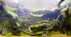 Die Unterwasseranlage stockbilder