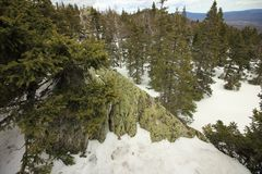 Die Ural Berge Nationalpark Taganay E Russland Stockbilder