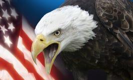 Die Vereinigten Staaten von Amerika Lizenzfreie Stockfotos