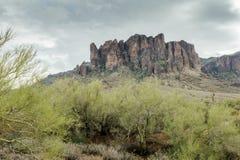 Die verschiedene Schönheit der Wüsten-Landschaft von Arizona Lizenzfreie Stockfotografie
