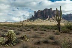 Die verschiedene Schönheit der Wüsten-Landschaft von Arizona Stockfotografie