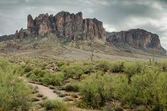 Die verschiedene Schönheit der Wüsten-Landschaft von Arizona Lizenzfreies Stockfoto