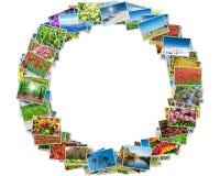 Die verschiedenen Naturfotos vereinbarten im runden Rahmen Stockfotos