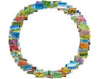 Die verschiedenen Naturfotos vereinbarten im runden Rahmen Stockfoto