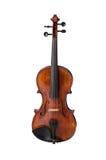 Die Violine lizenzfreies stockbild