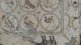 Die Vogel-Mosaik-Villa stock footage