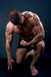 Die vollkommene muskulöse Mannaufstellung Stockfoto