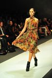 Die vorbildliche Präsentation entwirft von Erdem bei Audi Fashion Festival 2011 Stockfotos