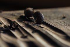 die Vorlagen-` s Handarbeit mit einer Holzoberfläche, ein Fachmann tut hölzernes Handwerk stockfotos