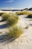 Die Wüste Leba lizenzfreies stockbild