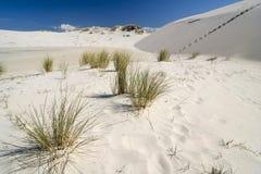 Die Wüste Leba stockfoto