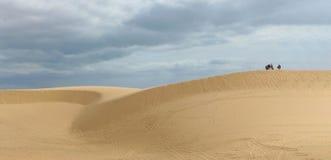 Die Wüste mit blauem Himmel Stockfotografie