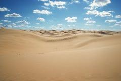 Die Wüste am Mittag Lizenzfreies Stockfoto