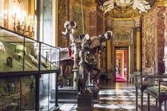 Die Waffenkammer-Kammer Royal Palaces in Turin stockbild