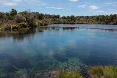 Die Waikaropupu-Frühlinge Stockfotografie