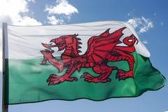 Die Waliser-Flagge enthält den roten Drachen von Cadwaladr, König von Gwynedd, zusammen mit den Tudor-Farben von Grünem und von w stockfotografie