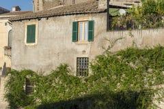 Die Wand mit Windows überwuchert mit Blättern in Rom lizenzfreie stockfotografie