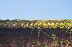 Die Wand von Peking-Verbotener Stadt im klaren blauen Himmel Lizenzfreie Stockfotos
