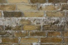 Die Wand wird von den alten braunen Ziegelsteinen mit Stalaktiten hergestellt Lizenzfreie Stockfotos