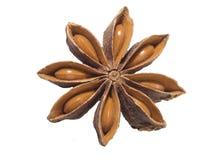 Die Wanne ist mit Samen auf einer wei?en Oberfl?che braun Kulinarische Beschaffenheit mit Illithium-Gew?rz lizenzfreies stockbild
