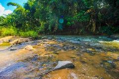 Die Wasserfälle Lizenzfreie Stockbilder