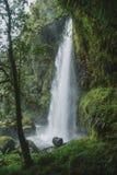 Die Wasserfälle von Aberdare-Strecken, Kenia lizenzfreie stockbilder